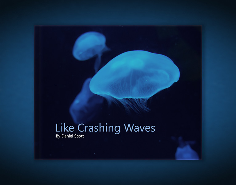 Like Crashing Waves Book