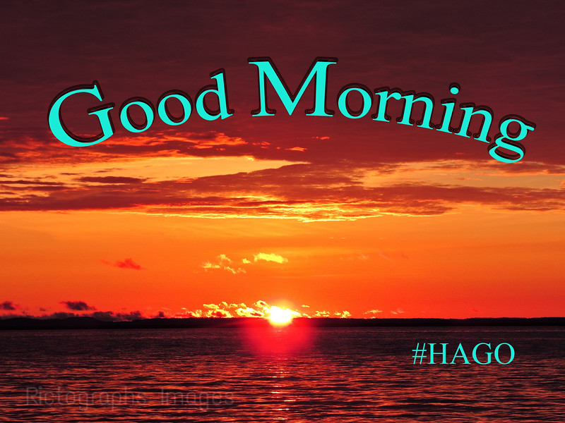 Good Morning #HAGO