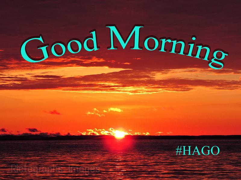 Good Morning #HAGO