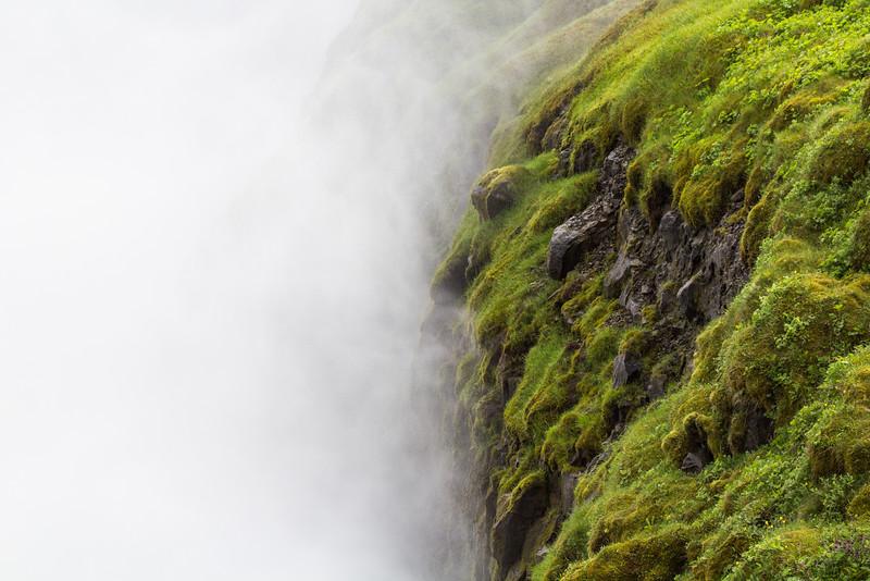Mist & Moss • Iceland