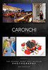 Caronchi_Photography_Design_Ad_NIFF_2012-10-03.ai
