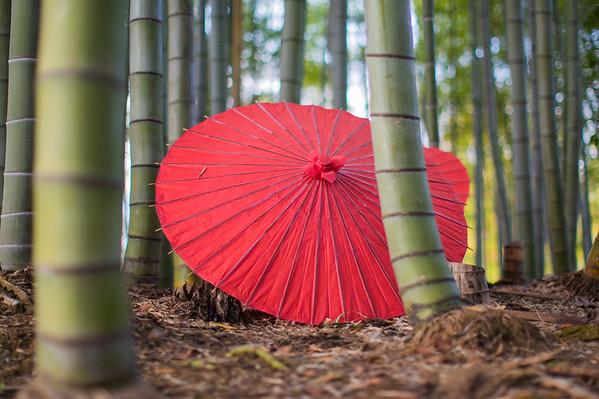 Red Umbrella • Kyoto