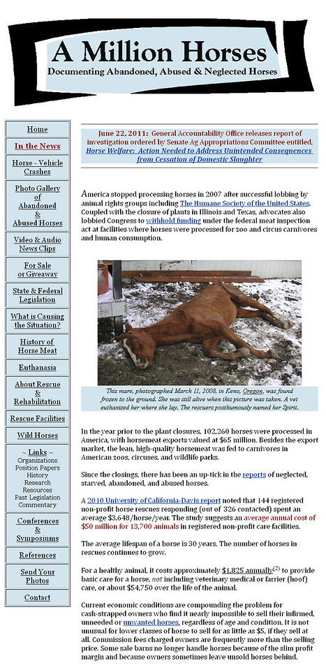 "March 2009 - Present<br /> A Million Horses, Documenting the Neglect and Abandonment of America's Horses<br /> Benson, Arizona / Wibaux, Montana<br />  <br /> <a href=""http://www.amillionhorses.com"">http://www.amillionhorses.com</a><br /> <br /> Developed and maintained website using Microsoft Office Frontpage. Provided daily research and maintenance of the site from March 2009 - June 2011. Site is available for reference but is no longer updated."