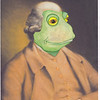 Toad portrait 1
