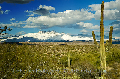 Arizona snow on the Four Peaks Mountains northeast of Mesa, AZ (ND70_2006-03-12DSC_3065-FourPeaksSnowSaguaro-nice-3.psd)