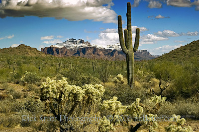 Arizona snow on the Superstition Mountains, desert view from Usery Mountain Park, Mesa, AZ (ND70_2006-03-12DSC_2999-SuperstitionMtnSnowSaguaroUseryMtnPark-nice-4.psd)
