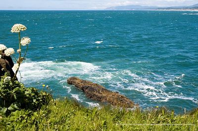 Great Oregon Ocean View (ND70_2005-07-13DSC_1650-BoilerBayRocks-(cc)-2 copy.jpg) ©2005rick@kruer.net-CreativeCommons(Attribution-NonCommercial-ShareAlike)