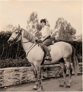 Gininha Almeida Santos montada no Azedo, Férias Dundo, Cavalos, 1966