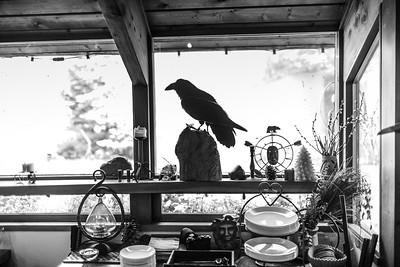 Girdwood Wedding: Carolyn & Ben at Raven Glacier Lodge and Around Girdwood by Joe Connolly