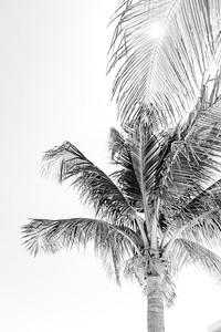 BreathlessRiviera-MexicoWedding-JanaMariePhotography-019