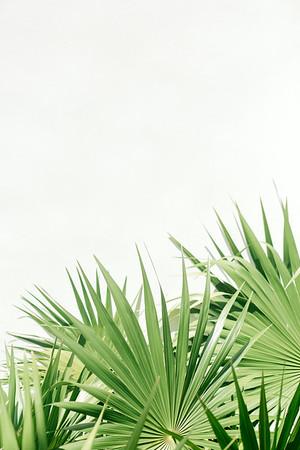 BreathlessRiviera-MexicoWedding-JanaMariePhotography-005
