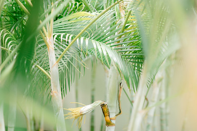 BreathlessRiviera-MexicoWedding-JanaMarie-017