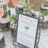 Enloe-GrandLake-Colorado-Wedding-00986