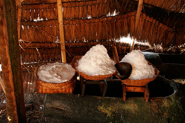 Salt Farmer 25