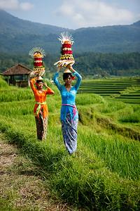 Bali 2008 03