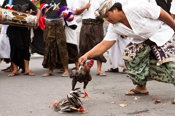 Bali 2011 - 28
