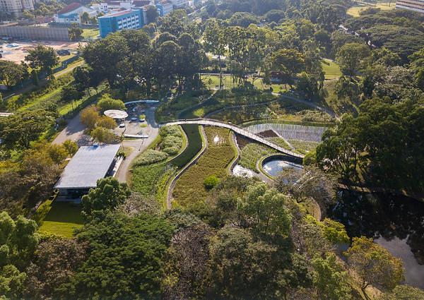 Bishan Park 12