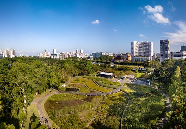 Bishan Park 17