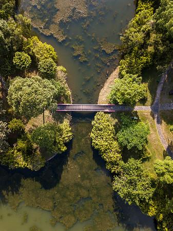 Bishan Park 09