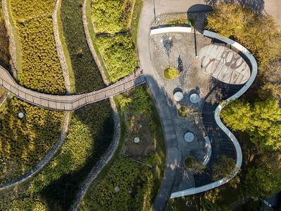 Bishan Park 10