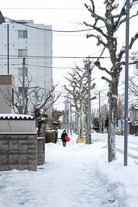 Hokkaido-23