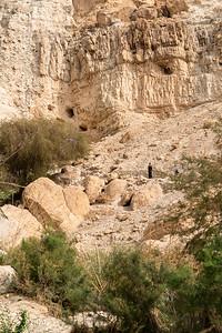 Israel-069