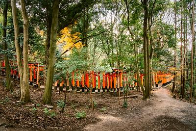 Kyoto 15