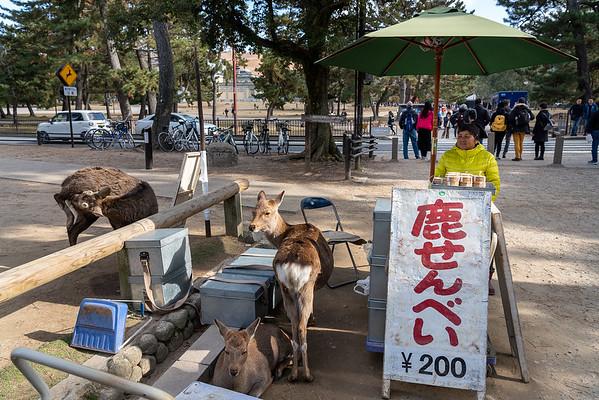 Nara 06