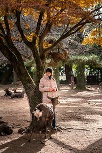 Nara 07