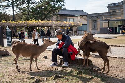 Nara 14
