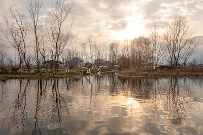 Reflections 06