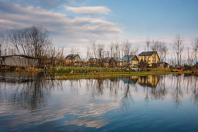 Reflections 05