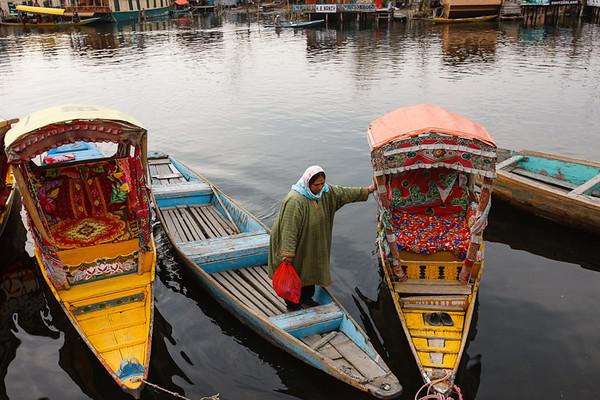 Kashmir 25