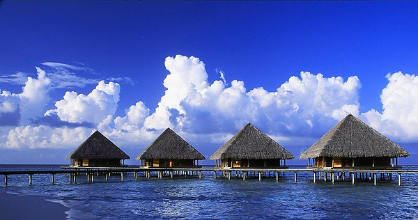 Maldives-04 15