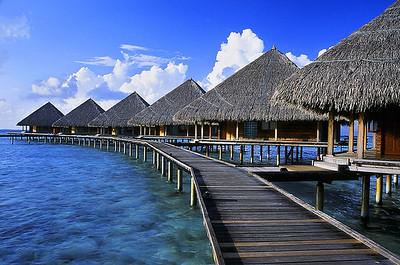 Maldives-04 08