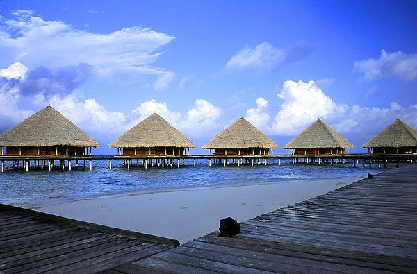 Maldives-04 17
