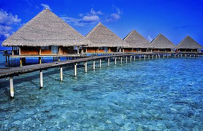 Maldives-04 19