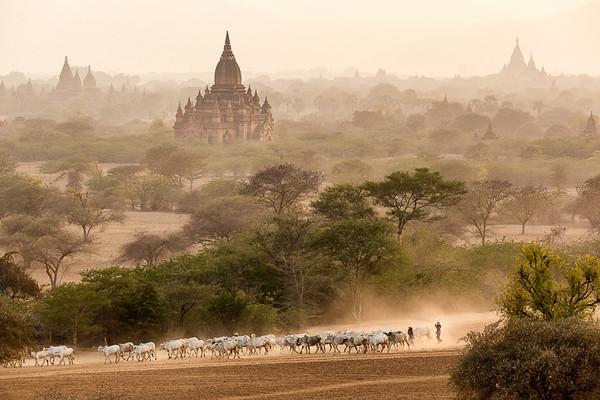 Myanmar 07