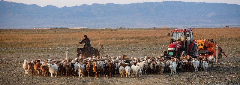 Xinjiang People 43