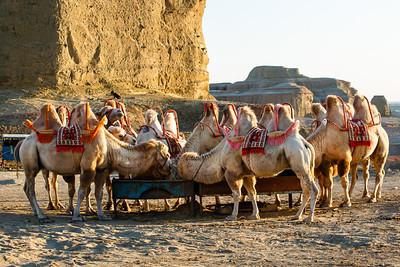 Xinjiang Places 034