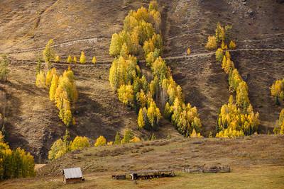 Xinjiang Places 088