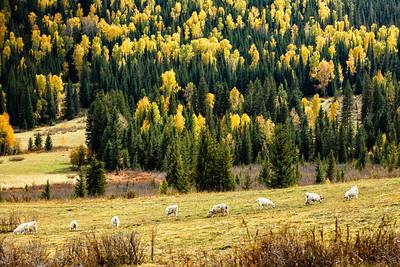 Xinjiang Places 087