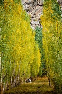 Xinjiang Places 091