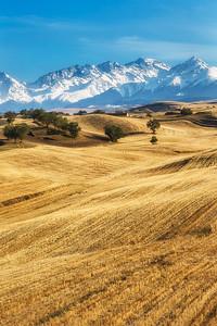 Xinjiang Places 103