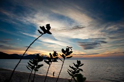 Penang Island2 16