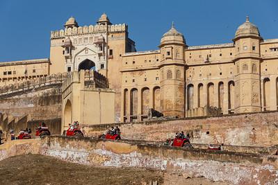 Jaipur 11