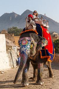 Jaipur 14