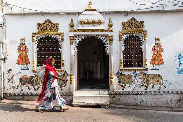 Udaipur 17