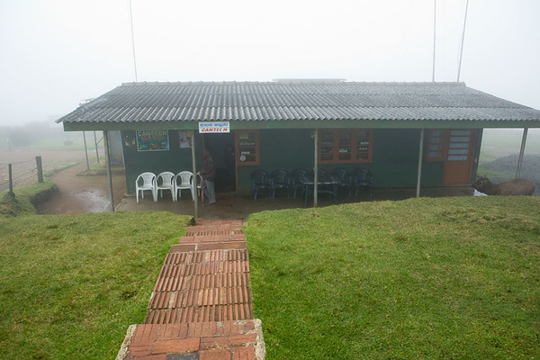 Horton Plains 17