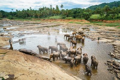 Sri Lanka 09
